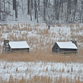 Log Cabins In Valley Forge by Bill Cannon