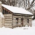 Log Home by Michael Peychich