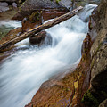 Log In The Rapids by Rick Strobaugh