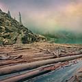 Log Jam At Moraine Lake Banff National Park Canada by Joan Carroll