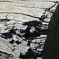Log Side by Joshua Sunday