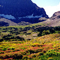 Logans Pass In Glacier National Park by Nancy Mueller