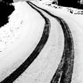 Logging Road In Winter by Mark Duffy