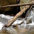 Logs In Stream by Jim DeLillo