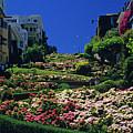 Lombard Street  by Jim Corwin