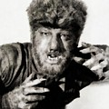 Lon Chaney, Jr. As Wolfman by John Springfield