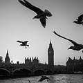 London, Big Ben  by Agata Boguszewska