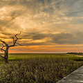 Lone Cedar Dock Sunset - Dewees Island by Donnie Whitaker