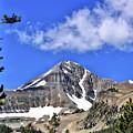 Lone Mountain by John Trommer