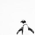 Lone Penguin by Victoria Hillman