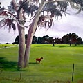 Lone Pony by Hal Newhouser