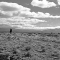 Lone Rider West Of Taos by Troy Montemayor