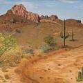 Lone Saguaro In Desert by Philip Hall