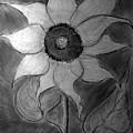 Lone Sunflower Iv by Jose A Gonzalez Jr