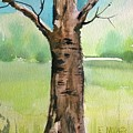 Lone Tree by Eunice Miller