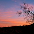 Lone Tree Sunset by Pope McElvy