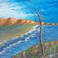 Lone Tree by Tony Rodriguez