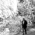 Lone Walk by Jez C Self