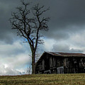 Lonely Barn by Judy Baird