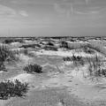 Lonely Beach by John Wijsman