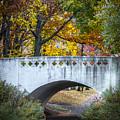 Lonely Bridge by Francisco Gomez