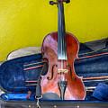 Lonely Fiddle by John Haldane