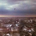 Lonely Flight by Paul Tokarski