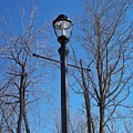 Lonely Lamp Post by Deborah MacQuarrie-Haig