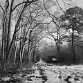 Lonely Road In Winter by Robert Banach