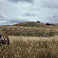 Lonely Tractor Panorama by Thomas Morris
