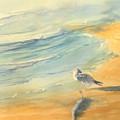 Long Beach Bird by Debbie Lewis