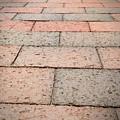 Long Bricked Walks by Peach Goon