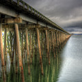 Long Bridge  by Lee Santa
