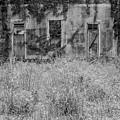 Abandoned by John Greco