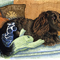 Long-haired Dachshund Watercolor by Michele Angel