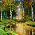 Long Indian Summer In The Woods by Isabella Howard