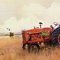 Long Lake Tractor by Theresa Tahara
