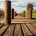 Long Long Way To The Bayou - Louisiana Dock by Mitch Spence