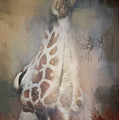 Long Neck by Pam  Holdsworth