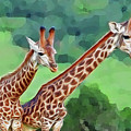 Long Necked Giraffes 2 by Bruce Iorio