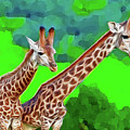 Long Necked Giraffes 3 by Bruce Iorio