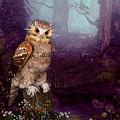 Long Whisker Owl by John Junek