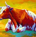 Longhorn Cow by Marion Rose