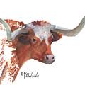 A Texas Longhorn Portrait by Kathleen McElwaine