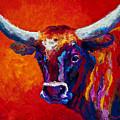 Longhorn Steer by Marion Rose