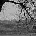 Longs Peak And Mt. Meeker The Twin Peaks Black And White Photo I by James BO  Insogna
