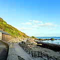 Looe Boathouse by Terri Waters