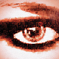 Look Into My Eye by Paula Ayers