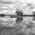 Looking Across J. C. Murphy Lake by Scott Kingery
