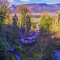Looking Back From Multnomah by Lynn Bauer